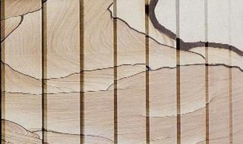 Печь Макси (Окаменевшее дерево) от/каменка об/камень