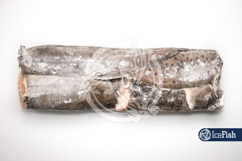 Зубатка пестрая (1/32*16) Мурманск