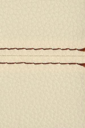 13501 Creme ZN200/brown