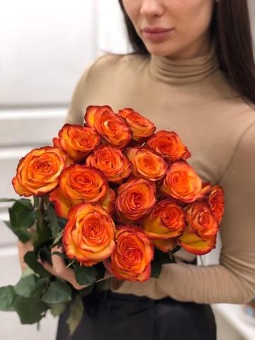Букет из 15 эквадорских роз 60 см ( цвет на выбор ) #2436