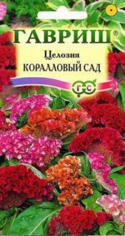 Семена Целозия гребенчатая Коралловый сад гребен.Коралловый сад 713545
