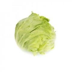 Даянас Knox семена салата айсберг (Rijk Zwaan / Райк Цваан)