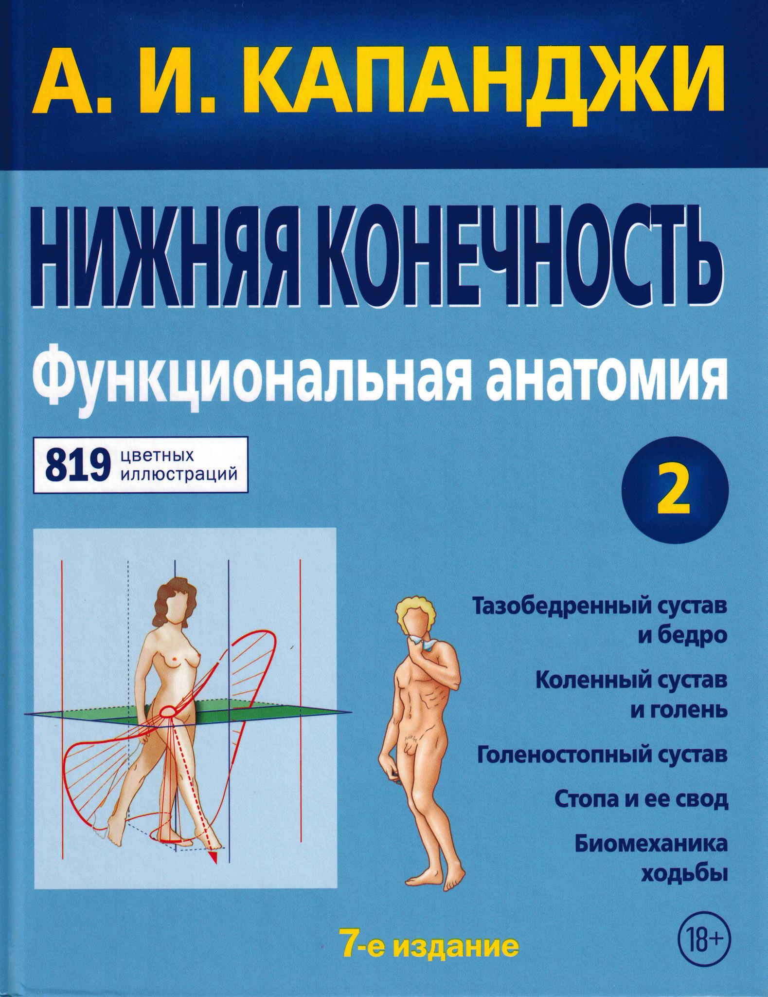 Конечности Функциональная анатомия. Том 2. Нижняя конечность nig_kon__t2.jpg