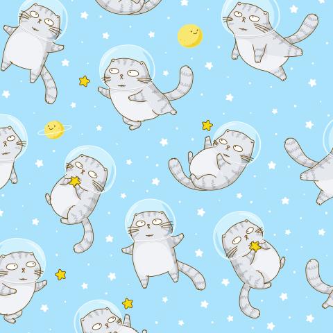 Котик-астронавт на голубом