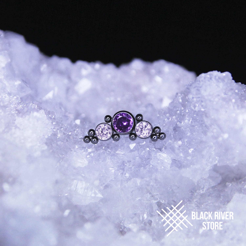 Orion's Belt Lavender