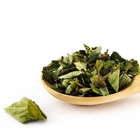 Травы Ежевика, лист blackberry-leaf-05.jpg