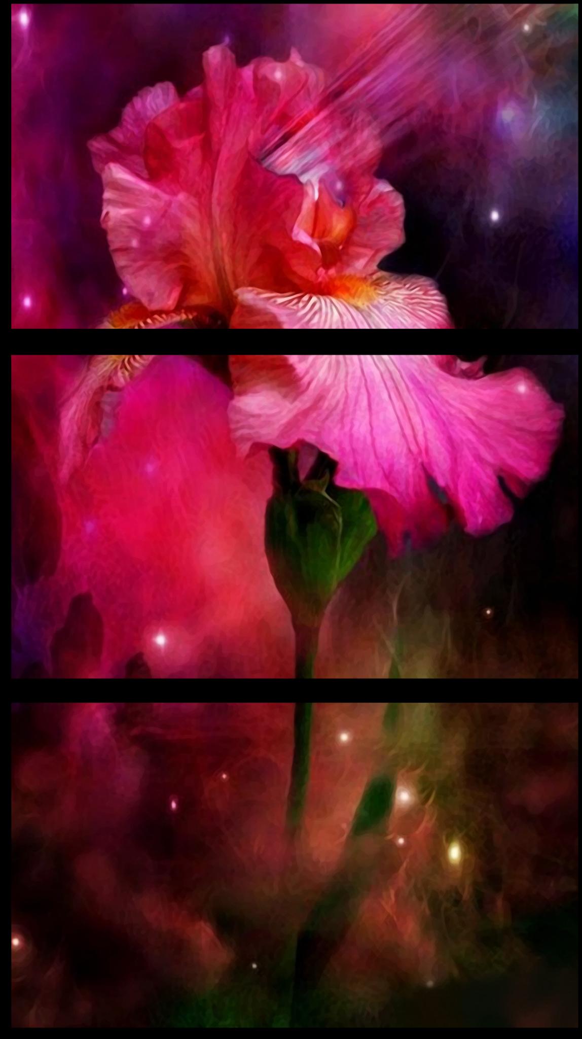 """Цветы Модульная картина """"Космический цветок"""" М461.png"""