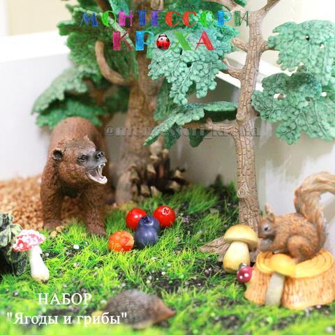 НАБОР «Ягоды и грибы»
