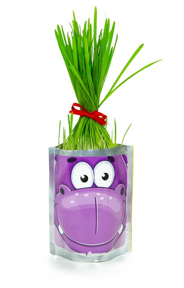 Набор для выращивания Happy Plant Бегемот