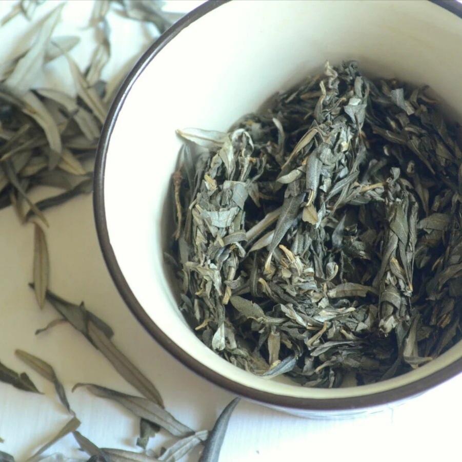 Травы Облепиха, лист sea-buckthorn-leaf-01.jpg