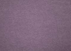Микровелюр Simple (Симпл) 48
