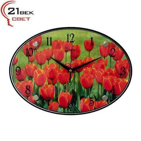 2434-401 (10) Часы настенные