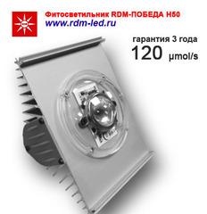 Фитооблучатель RDM-ПОБЕДА Н50