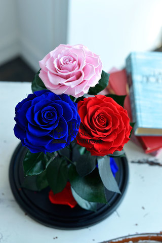 Роза Трио Premium Оптом Выс*Диам*Бутон (32*22*3х12см)Цвет мультиколор