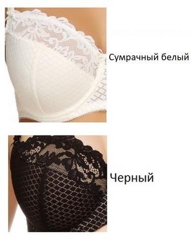 L91G40-БЮСТГАЛЬТЕР