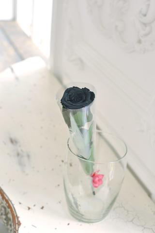 Роза на стебле Premium Оптом Высота*Бутон (37см*5-6см) Цвет черная