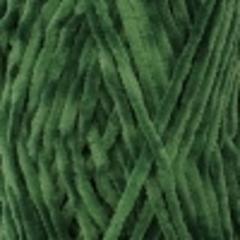 60 (Зеленая черепаха)