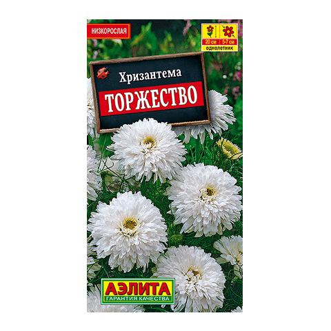 Хризантема букетная Торжество   (Аэлита)