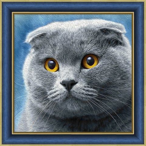 Алмазная Мозаика 30x30 Шотландская вислоухая кошка (арт. AC934 )