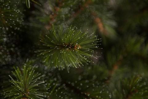 Искусственная пихта Прелестная 120 см зеленая