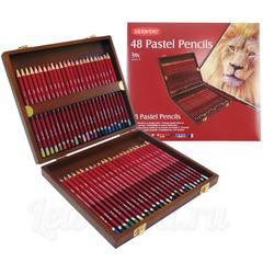 Набор из 48 пастельных карандашей Derwent