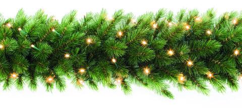 TRIUMPH TREE хвойная гирлянда Лесная красавица зеленая (лампы) 270*33 см