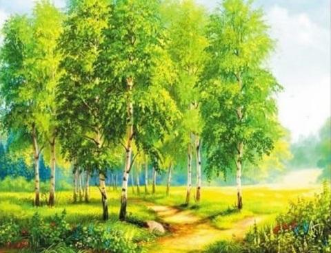 Алмазная Мозаика 40x50 Летняя прогулка среди берез (арт. WXSA2597 )