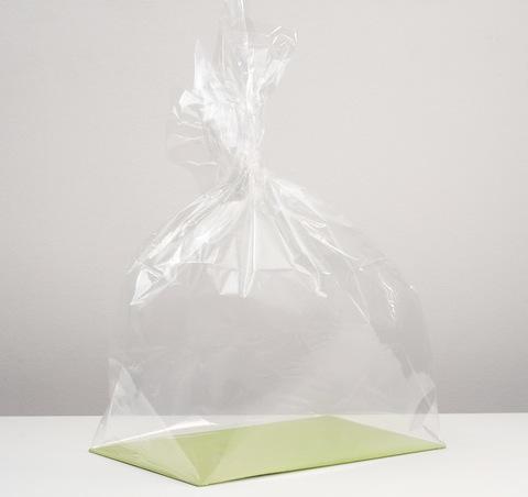 Пакет с жестким дном 22 х 28 х 60 см