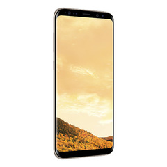 Samsung Galaxy S8+ SM-G955FD 64Gb Gold - Золотой