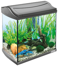 Аквариумы Аквариумный комплекс для рачков, Tetra AquaArt Crayfish Discover Line, 30 л Tetra_AquaArt_Crayfish_Discover_Line_аквариумный_комплекс_30_л.png