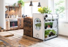 Наш Гроушоп (Growshop) growmir.ru предлагает Вам самим выращивать полезные овощи и фрукты, зелень и другие продукты и заботиться о своем здоровье! Если вам нужны другие размеры вы можете обратится к нашим менеджерам они помогут вам подобрать нужный вам гроубокс (шкаф) или гроутент (палатка).