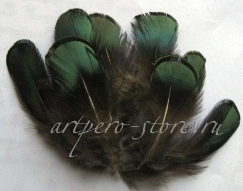 Перья алмазного фазана, изумруд,5-8 см., 10 шт.