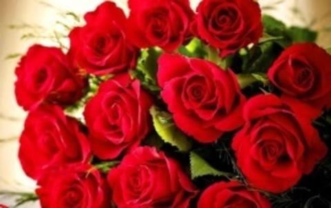 Алмазная Мозаика 40x50 Букет красных роз (арт. SGL73570 )