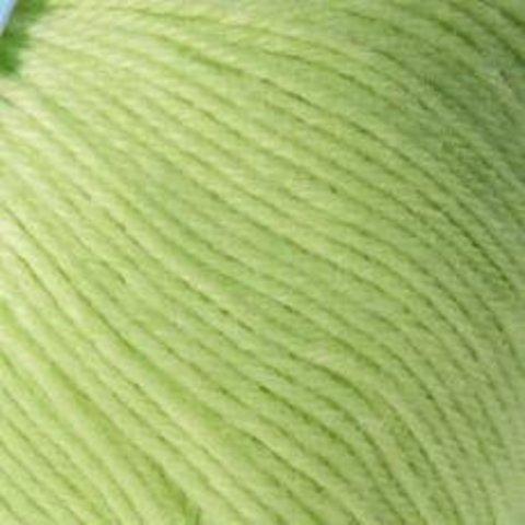 Пряжа Пехорка Детский каприз салатный 193