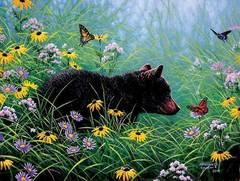 Картина раскраска по номерам 40x50 Медвежонок и бабочки