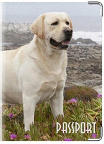 """Обложка для ветеринарного паспорта """"Лабрадор"""" (белый)"""