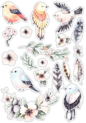 Печать на сахарной бумаге, Набор птицы 3