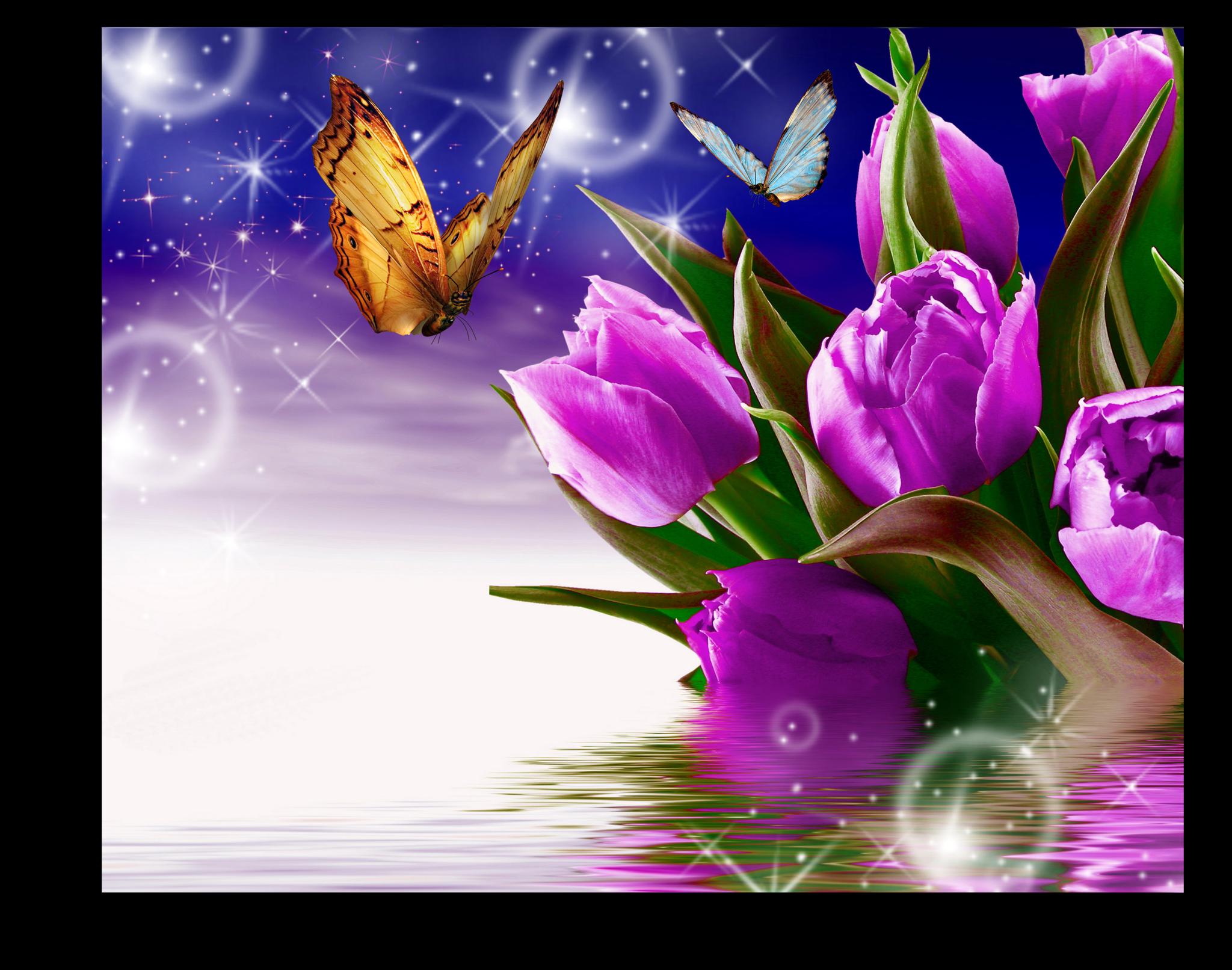 """Постеры Постер """"Фиолетовые тюльпаны"""" п64.png"""