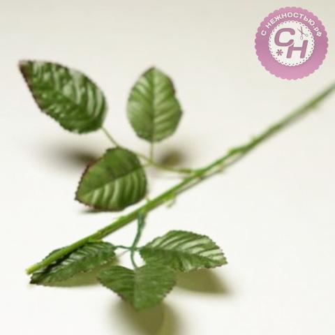 Стебель розы 6 листов, 45 см.
