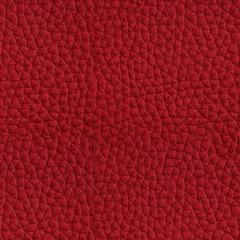 Искусственная кожа Hermes (Гермес) 884 Samba