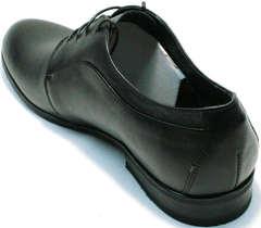 Осенние туфли мужские кожаные Ikoc 060-1 ClassicBlack.