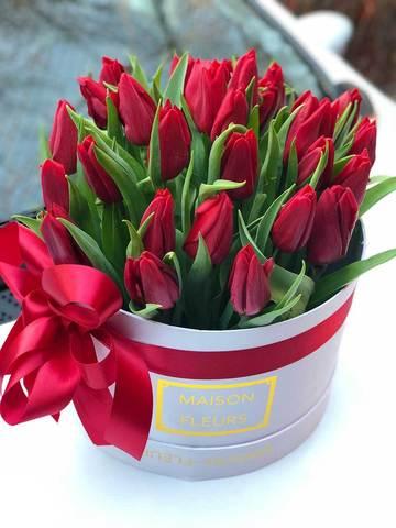 Бордовые тюльпаны в коробке