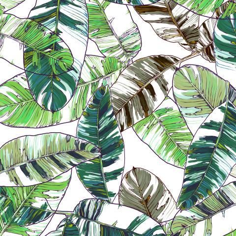 листья банана_02