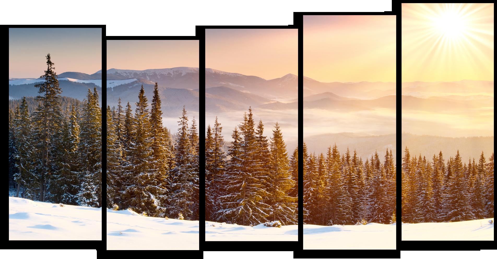 "Природа Модульная картина ""Солнце над тайгой"" М549.png"