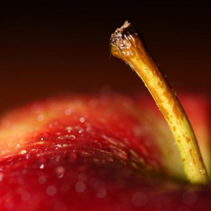 Ароматизатор для мыла Сладкое яблоко 30 мл