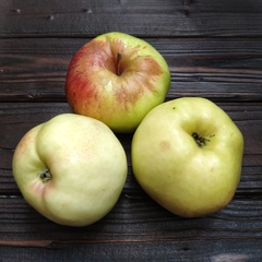 Яблоки Богатырь (1 кг)