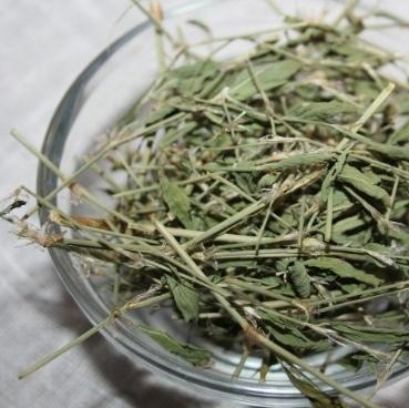 Травы Горец птичий (Спорыш) polygonum-05.jpg