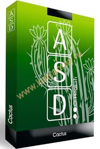 Бестабачная смесь ASD Hookah - Кактус