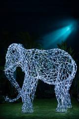 Световой Слон