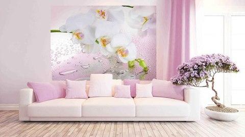 Розовый мираж 272x194 см, люкс